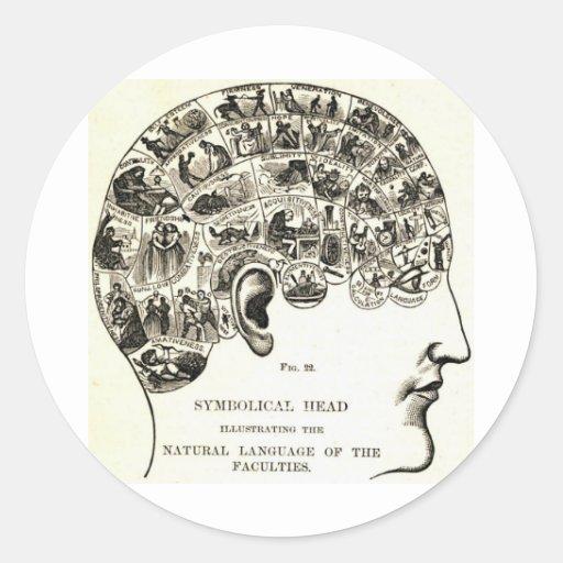 Phrenology Round Stickers