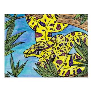 Phryne el pitón tarjeta postal