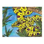Phryne the Python Postcard