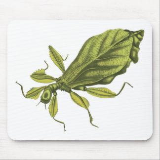 Phyllium Siccifolia Mouse Pad