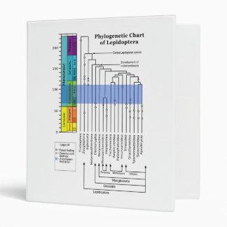 Phylogenetic Chart of Lepidoptera Binder