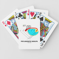 Phylogenetic Groups (Mammalia) You Are Here Bicycle Playing Cards