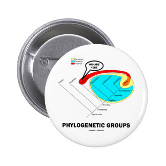 Phylogenetic Groups Mammalia You Are Here Pin