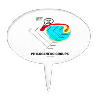 Phylogenetic Groups (Mammalia) You Are Here Cake Toppers