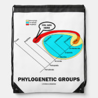 Phylogenetic Groups (Mammalia) You Are Here Drawstring Backpack