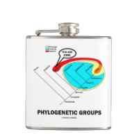 Phylogenetic Groups (Mammalia) You Are Here Hip Flasks