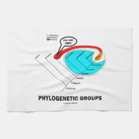 Phylogenetic Groups (Mammalia) You Are Here Kitchen Towel