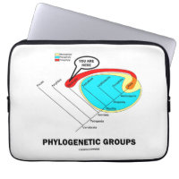 Phylogenetic Groups (Mammalia) You Are Here Laptop Computer Sleeve