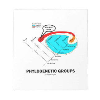 Phylogenetic Groups (Mammalia) You Are Here Memo Note Pad
