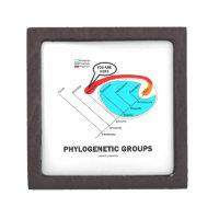Phylogenetic Groups (Mammalia) You Are Here Premium Keepsake Box