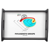 Phylogenetic Groups (Mammalia) You Are Here Service Tray