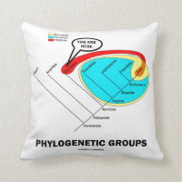 Phylogenetic Groups (Mammalia) You Are Here Throw Pillows
