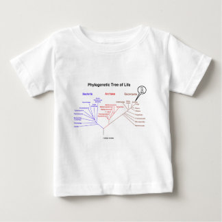 Phylogenetic Tree Of Life - You Are Here (Biology) Baby T-Shirt