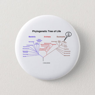 Phylogenetic Tree Of Life - You Are Here (Biology) Button