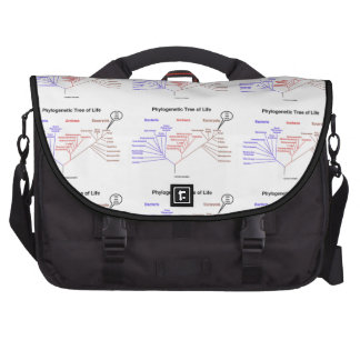 Phylogenetic Tree Of Life You Are Here Commuter Bags