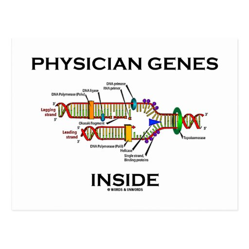 Physician Genes Inside (DNA Replication) Postcard