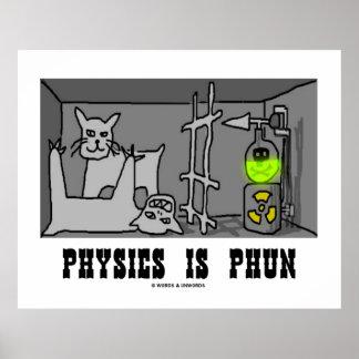 Physics Is Phun (Fun) Schrödinger's Cat Experiment Poster