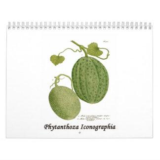 Phytanthoza Iconographia Calendario De Pared