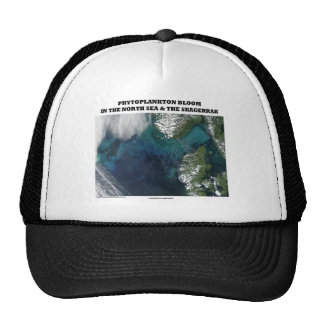 Phytoplankton Bloom North Sea and Skagerrak Hats