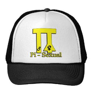 Pi divertido Pi-Sexual Gorro
