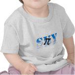 Pi en el cielo camiseta