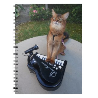 Piano Cat, Funny Somali Cat Musician Playing Piano Notebook
