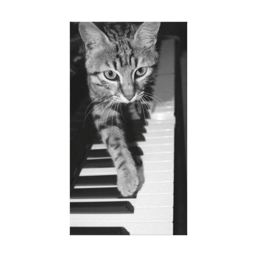 Piano del playnig del gato impresión en lienzo estirada