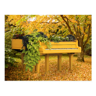 Piano in woods postcard