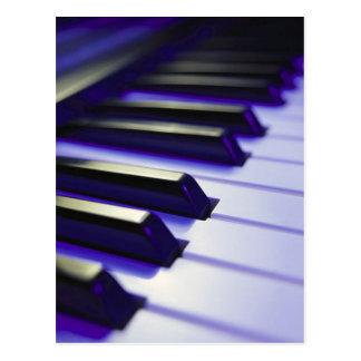 Piano Keys Ebony And Ivory Postcard