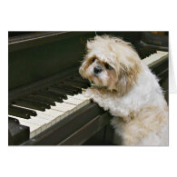 piano player greeting cards