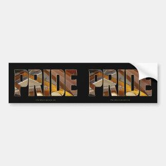 Piano PRIDE 2 Bumper Sticker