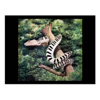Piano Snake Postcards
