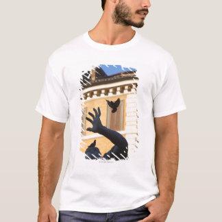 Piazza Navona Bernini fountain statue, pigeon in T-Shirt