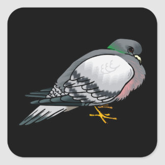 Pibbles Pigeon.png Square Sticker