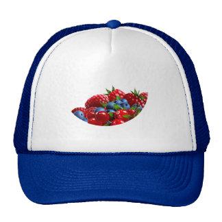 pic_09 trucker hat