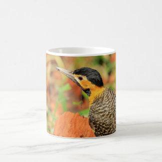Picapau-pity-field with full peak coffee mug
