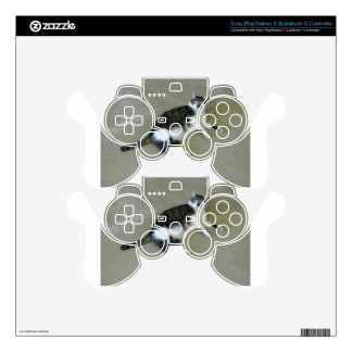 Picard PS3 Controller Skins