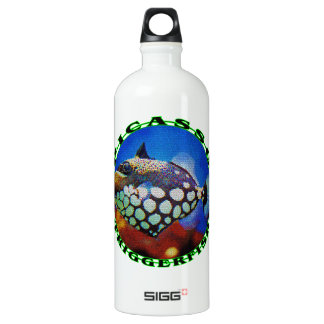 Picasso-Fish Aluminum Water Bottle