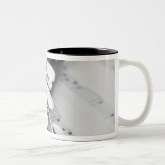 Piccolo on a Score Two-Tone Coffee Mug