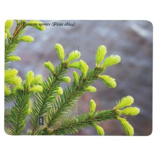 Picea de Noruega Cuaderno