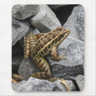 Pickerel Frog Mouse Pad