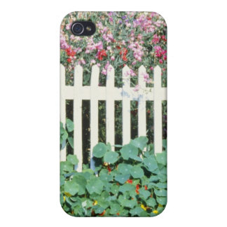Picket Fence With Sweet Peas And Nasturtium iPhone 4/4S Cover