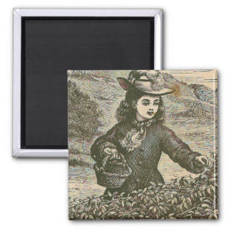 Picking Berries 2 Inch Square Magnet