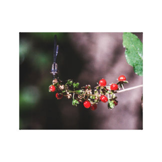 Picking Berries Canvas Print