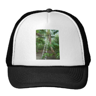 Picking fresh coconuts trucker hats