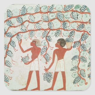 Picking grapes, from the Tomb of Nakht Square Sticker