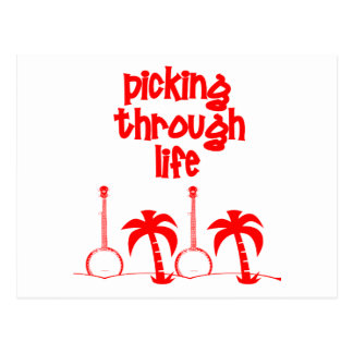 Picking Through LIfe Postcard