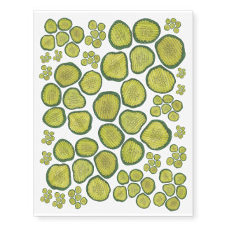 Pickle Chips Green Dill Pickle Chip Party Favors Temporary Tattoos