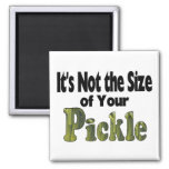 Pickle Size 2 Inch Square Magnet