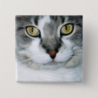 Pickle the Cat Button